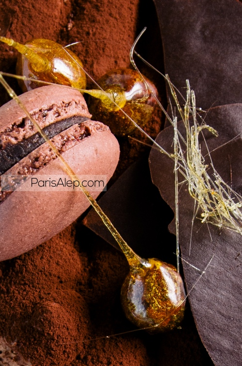 Trianon Royal chocolat